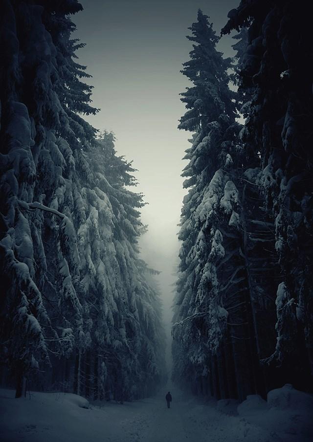 100 самых красивых зимних фотографии: пейзажи, звери и вообще 0 10f5b2 fae5e9c1 orig