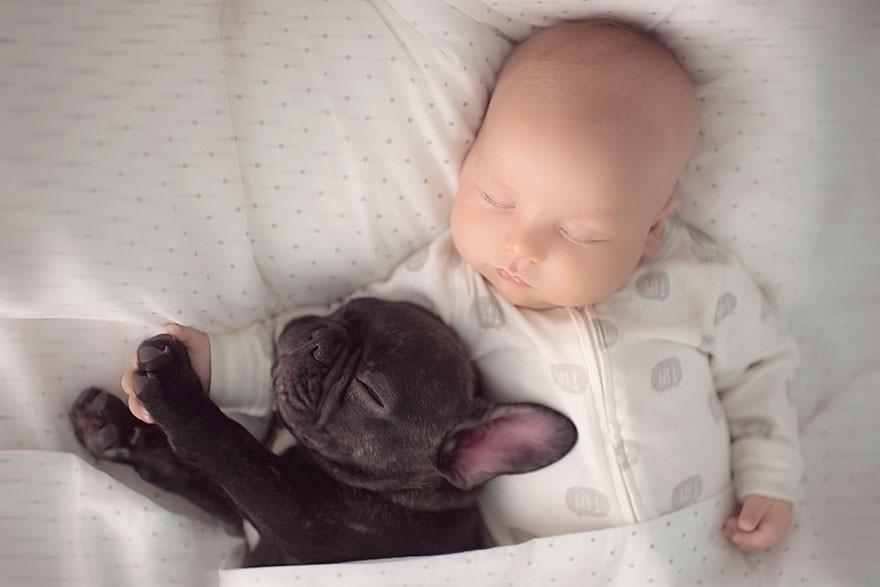 3. «Фарли играет с Диланом и старается не сопеть, когда тот спит».