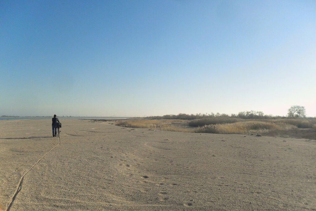 На песках ... SAM_4490.JPG