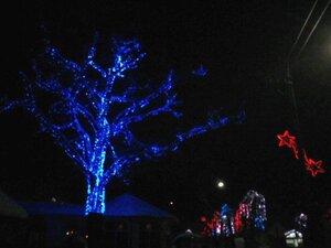 Дерево, кликабельно 640х480