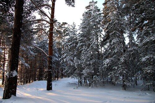 http://img-fotki.yandex.ru/get/5700/for-our-photos.5/0_42e67_89855e6f_L.jpg
