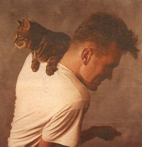 "Стивен Моррисси, вокалист группы ""The Smiths"""