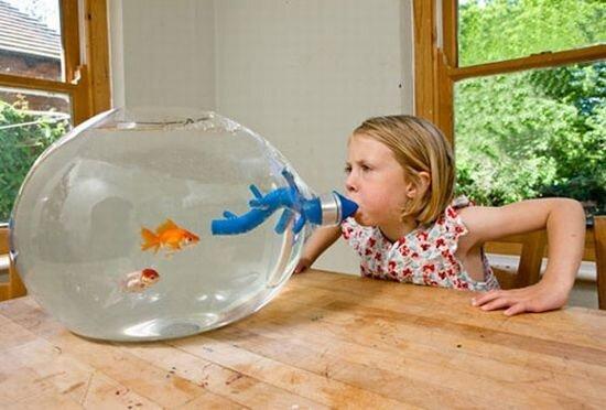 необычные аквариумы