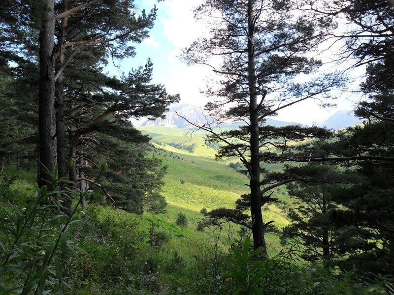 В стране гор, у Оштена, Цеце