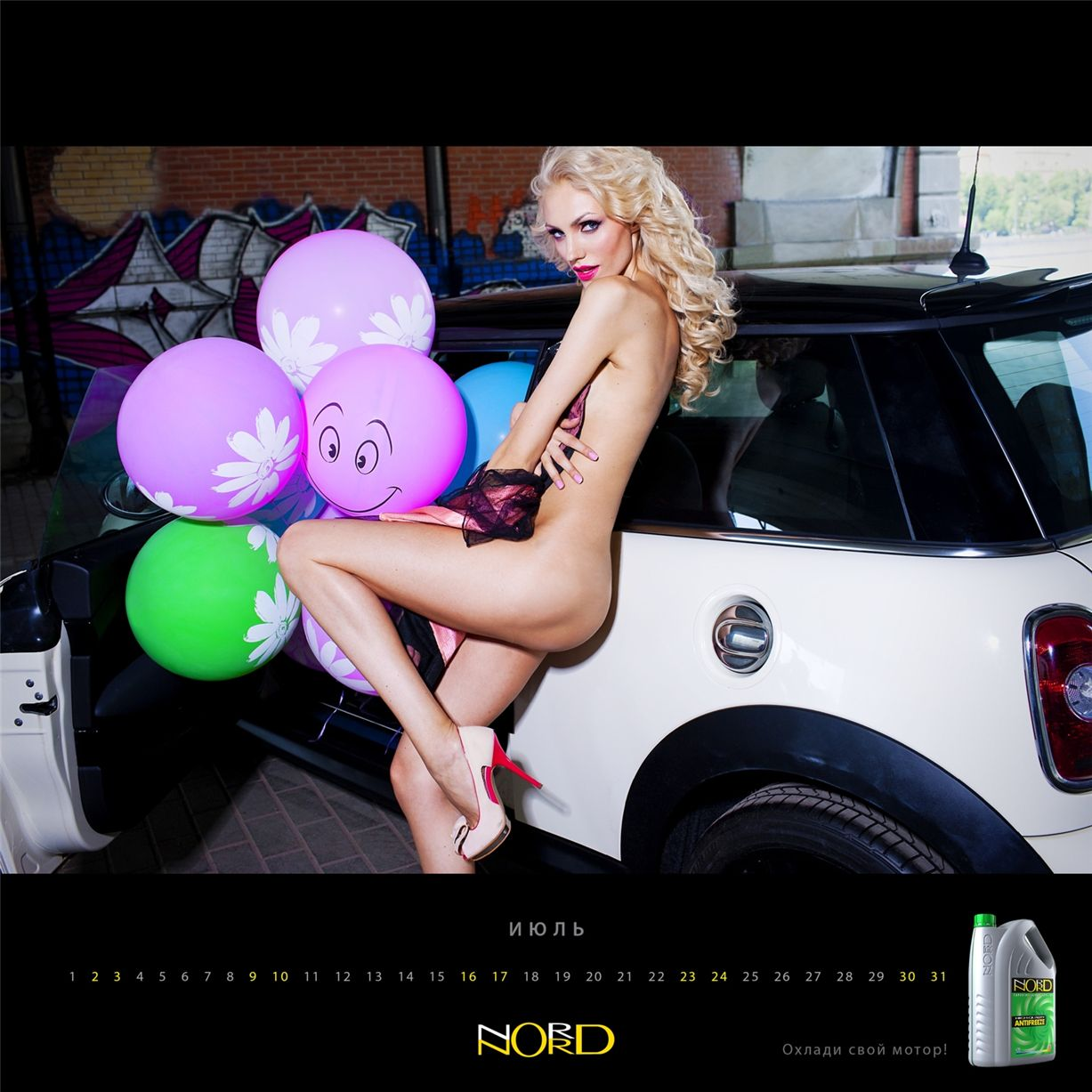 календарь Nord Antifreeze 2011 official calendar