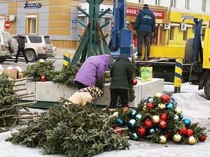 Нарядим ёлки во дворе - спасём десятки тысяч деревьев