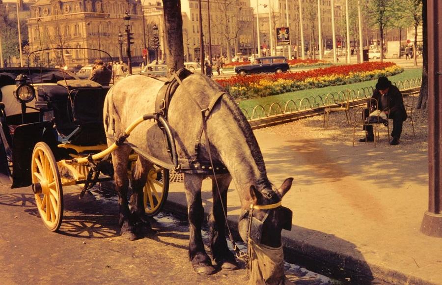 26 Calèche au rond-point des Champs-Elysées 1962.jpg