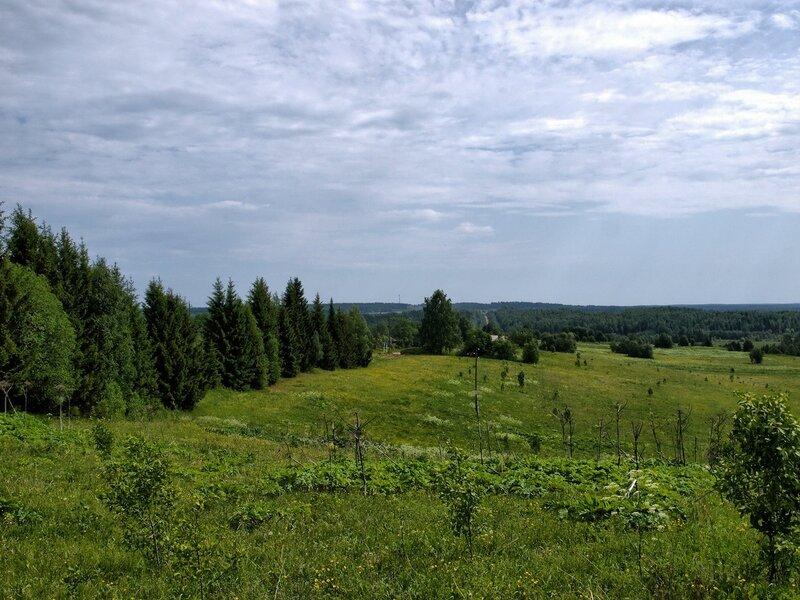 Зелёный мир: дорога Омутнинск-Песковка