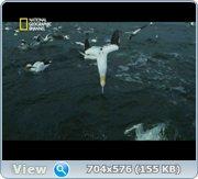 Освещённая пучина / Light the Ocean (2011) DVB