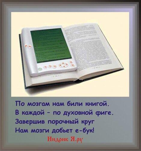 Электронные книги могут занять четверть книжного рынка России.