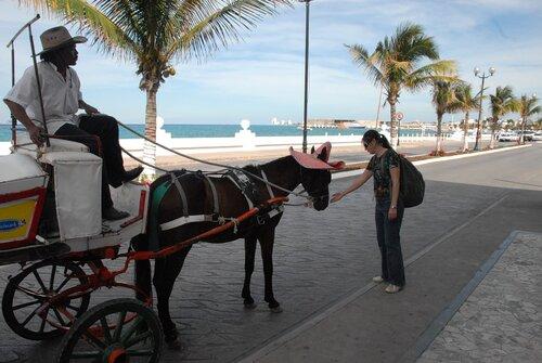 Какой же настоящий мексиканец без шляпы?..