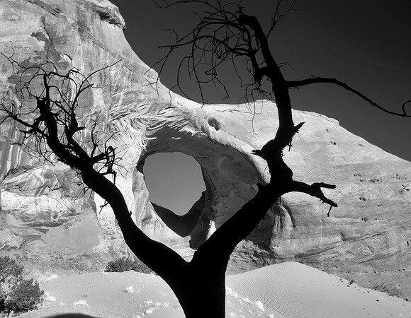 Dennis Frates - USA Framed Arch