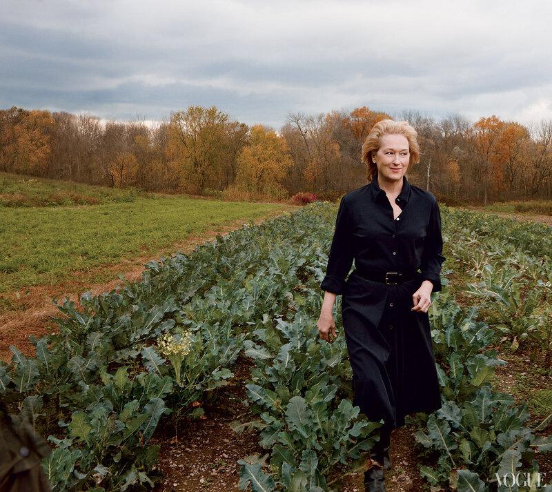 Мерил Стрип (Meryl Streep) январь 2012