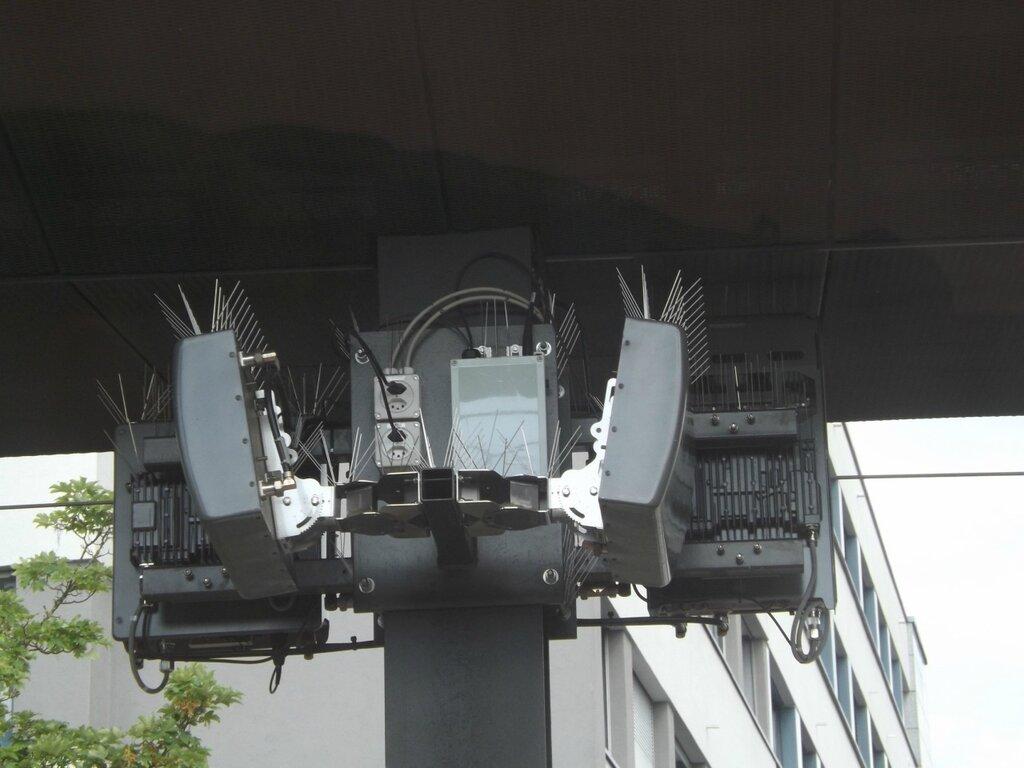 DSCF2844.JPG