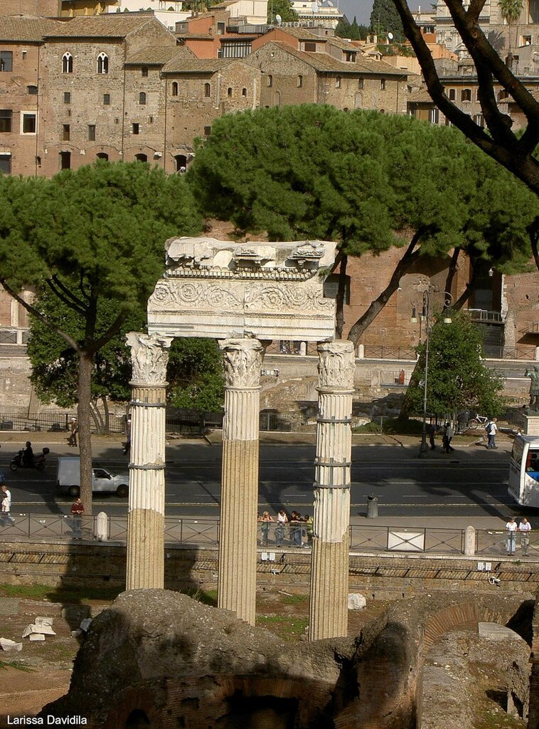 Храм Венеры - покровительницы рода Юлиев.