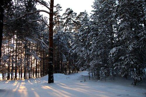 http://img-fotki.yandex.ru/get/5702/for-our-photos.5/0_42e69_7fd0a35a_L.jpg