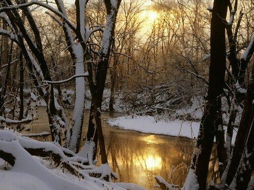 зима,backgrounds,