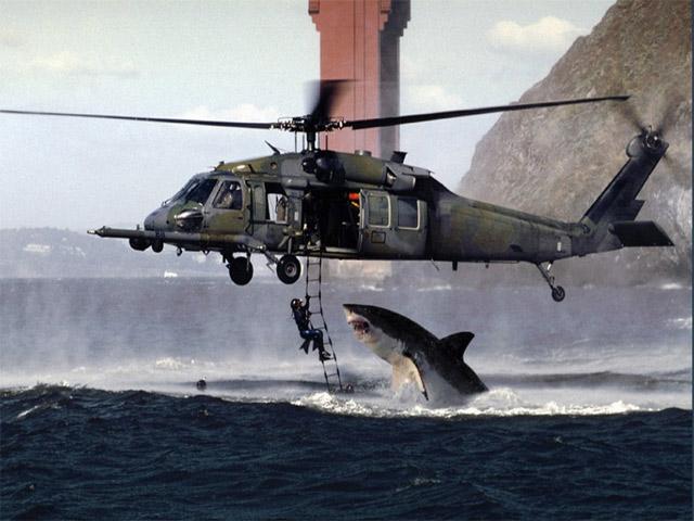Акула напала на вертолет