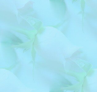 роза и ракушка(фон с цветком и ракушкой бледный)