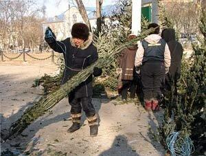 Во Владивостоке праздничное дерево появилось позже, чем во всей России