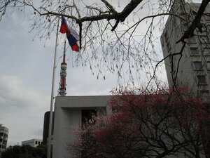 Японские радикалы осквернили российский флаг у посольства РФ в Токио