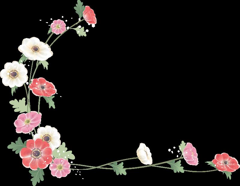 Открытки сестре, окантовка на открытку цветы