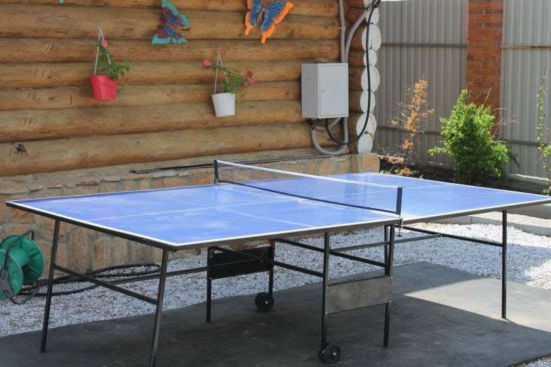 Или поиграть в настольный теннис. (09.06.2015)