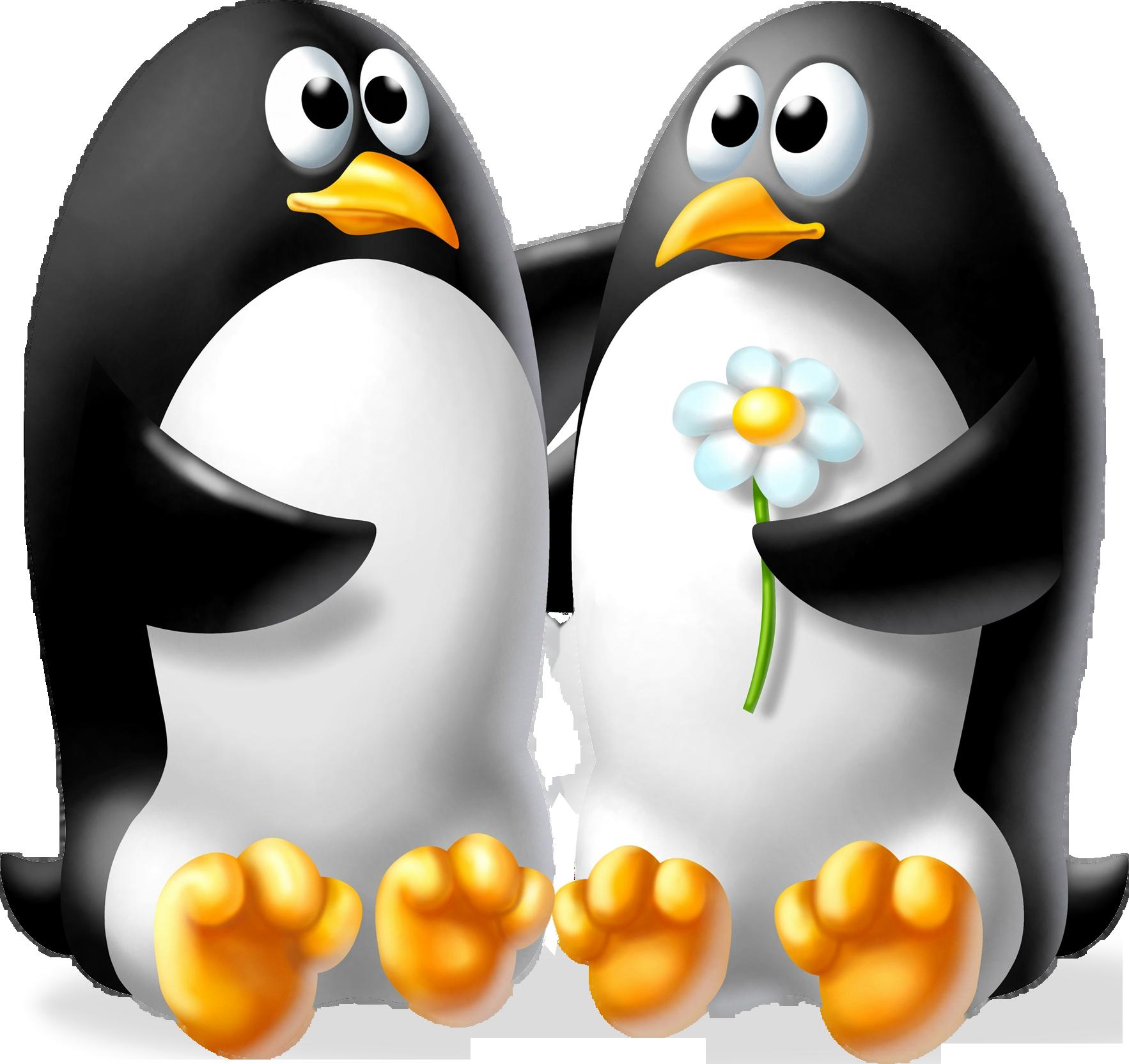 много смешные картинки пингвина рисунок выбрал