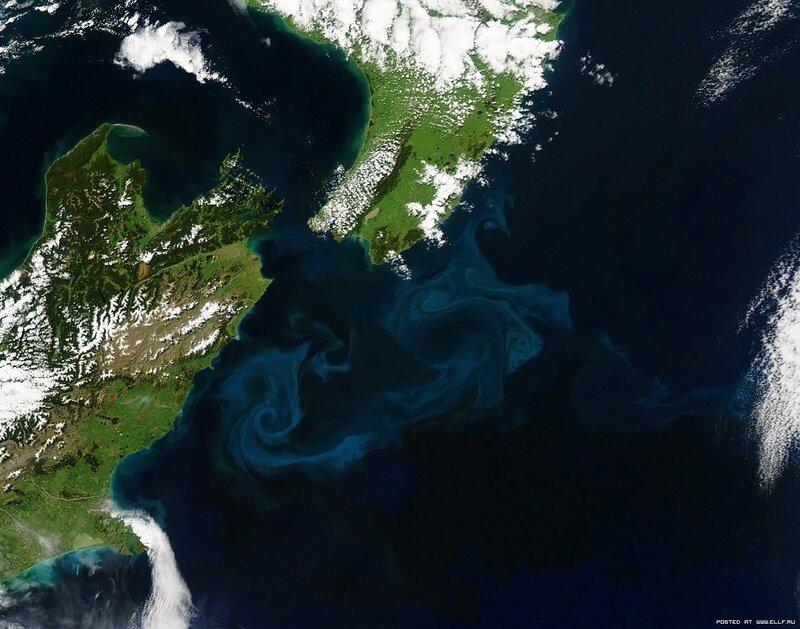 19. Слияние течений в водах Новой Зеландии