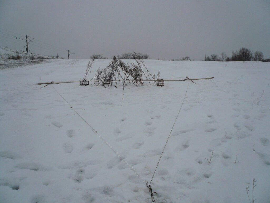 сеть путанка для ловли фазана