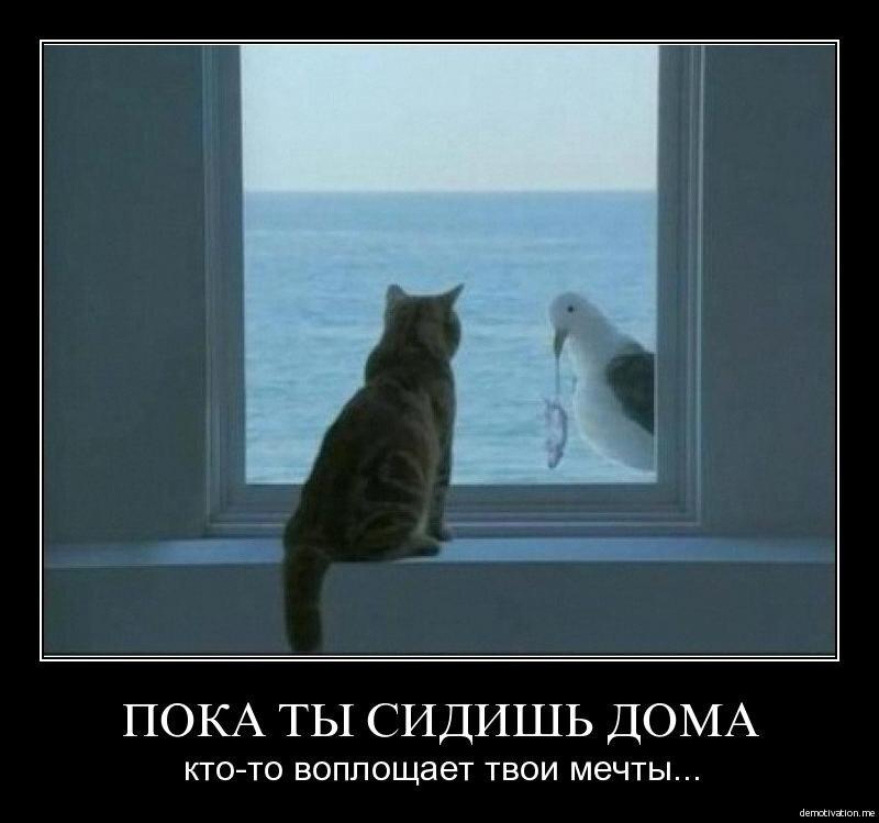 Пока ты сидишь дома, кто-то воплощает твои мечты