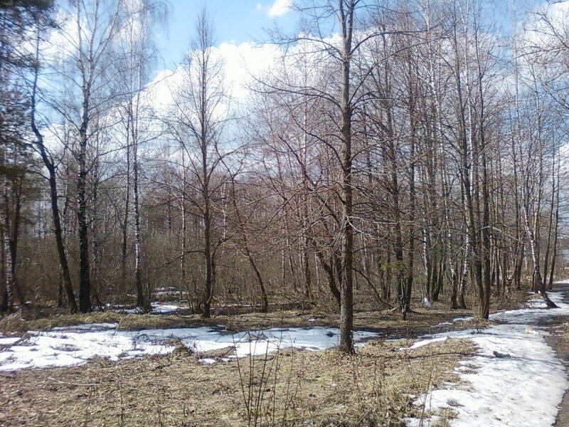 Весна II