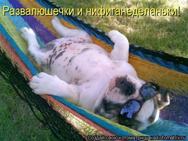 http://img-fotki.yandex.ru/get/5703/lyudmila-fialka-2011.1/0_4dd02_397c7ef9_XL