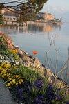 Женевское озеро и город Монтрё. Швейцария