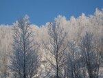 Зимнее-2011