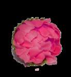 «doniar-HappySpring-pELEMENTY» 0_54fb8_c7ce878f_S