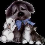 Собаки  0_57c78_6b4fea32_S