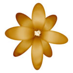 «DBV Gold Rush» 0_58b4e_496498c5_S