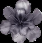 «Фиолетовая весна. Kimberkatt-SpringFlin» 0_5b716_f52e9e2f_S