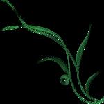 pbj_lkfl_foliage9.png