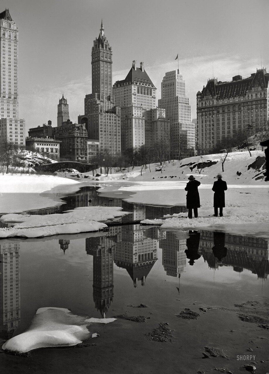 """Samuel H. Gottscho""""New York City views. Plaza buildings from Central Park.""""The Savoy Plaza and Plaza hotels, 1933"""