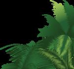 пальма5.png