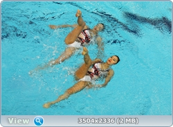 http://img-fotki.yandex.ru/get/5704/13966776.105/0_88203_3dc932b2_orig.jpg