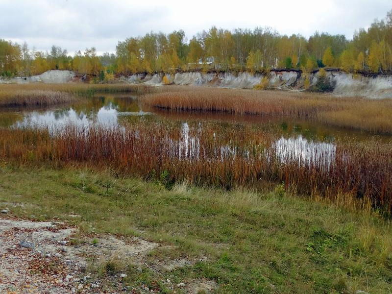 Старый маршалитовый карьер около села Архангельское (30.09.2015)