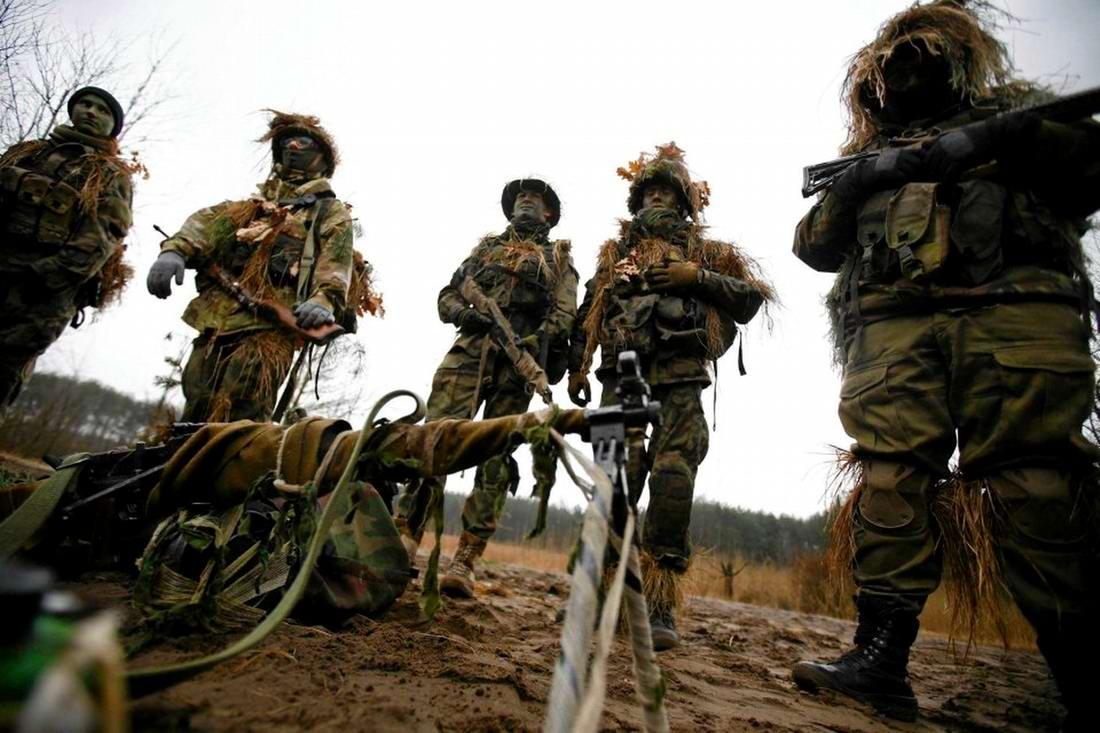 Военизация по-польски: Назло Европе и в угоду Америке (14)
