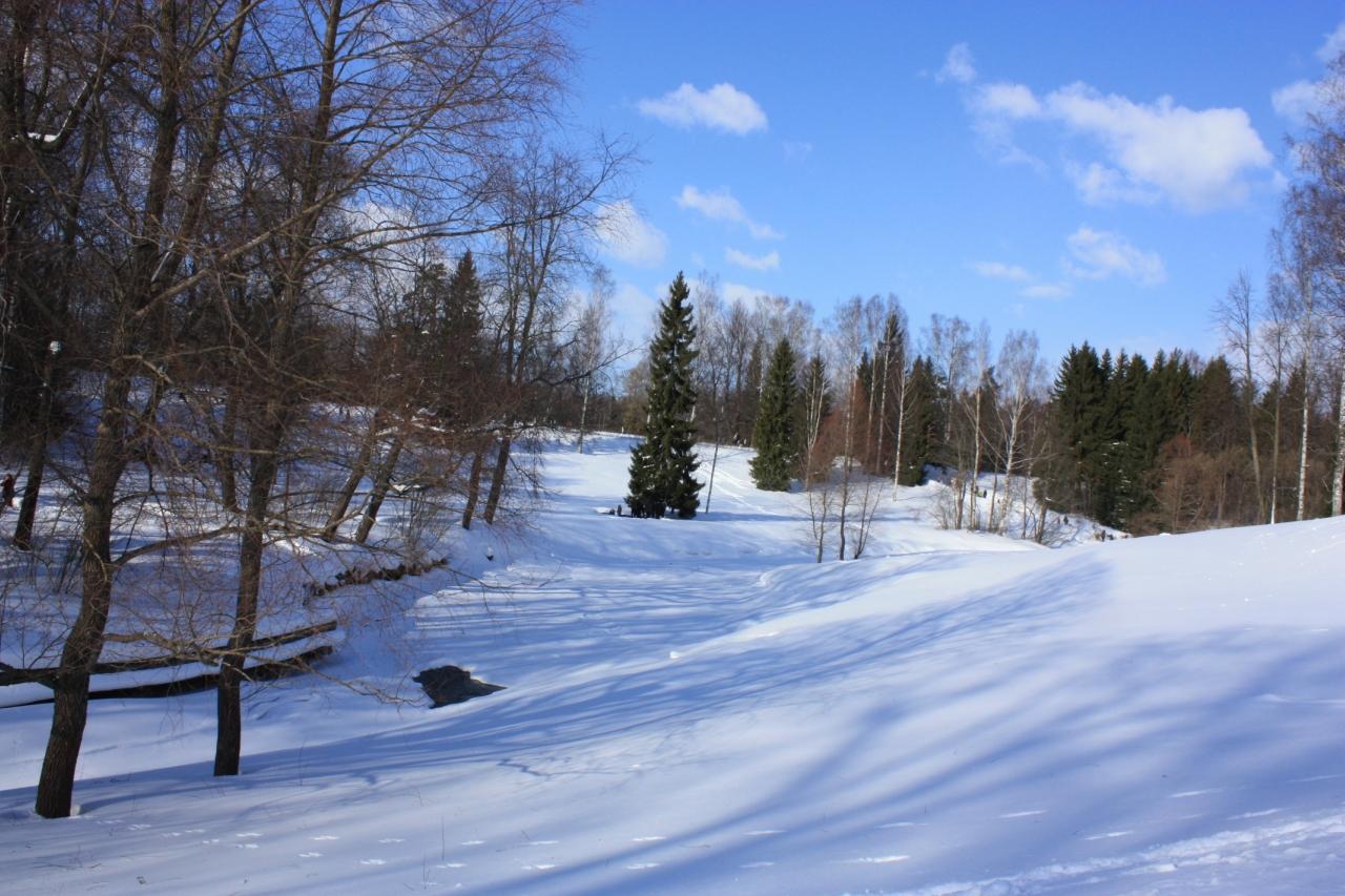 Павловский парк зимой.