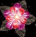 «zestaw_wielkanocny_marzeny_elementy»  0_554c4_b2ec7153_S