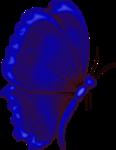 бабочки 0_50e77_30c9fbb5_S