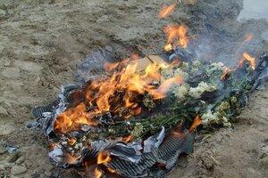 В Приморье уничтожено несколько партий заражённых цветов
