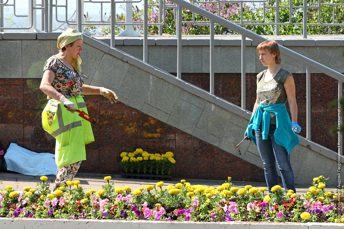 Озеленители в парке Победы на Соколовой горе